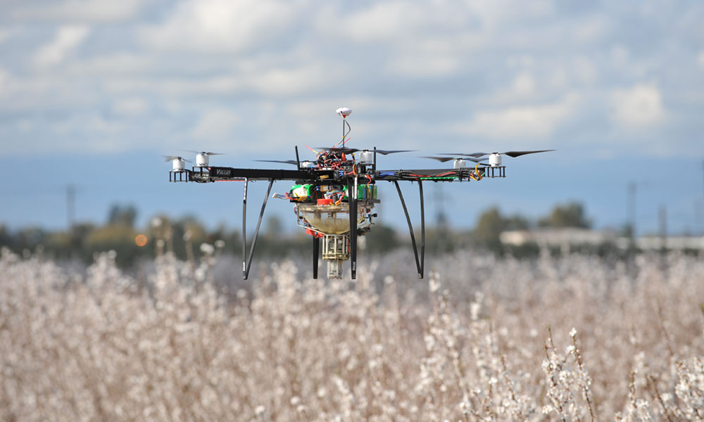 Pollinating drones operated by Syracuse-based Dropcopter fly 10 feet above the treetops. Pollinating via drone helps farmers maximize their window for pollination.