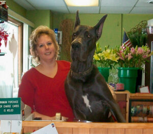 "Gail Jones, owner of DeVine Designs by Gail in Fulton, with Kooper, one of her four dogs at her shop: ""Kooper has more fans than I do,"" Holmes says. ""People now come in to see the dogs, especially Kooper."