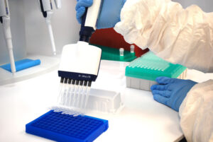 Once the samples are RNA extracted, they are ready for qPCR (quantitative polymerase chain reaction) testing. This step tests for the presence of SARS-CoV-2 in the sample.