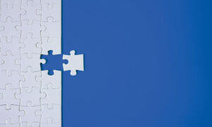 Read more about the article The Missing Piece of the Economic Development Puzzle