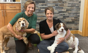 Trending: Pets in the Workplace